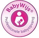 Erkende professionele babyopvang!